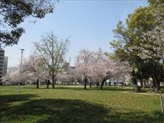 今林公園1