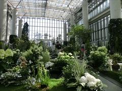 奇跡の星の植物園2